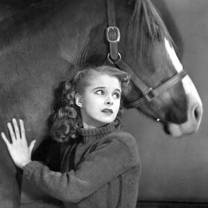 Black Beauty (1946)